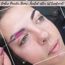 Ombre-Powder-Brows